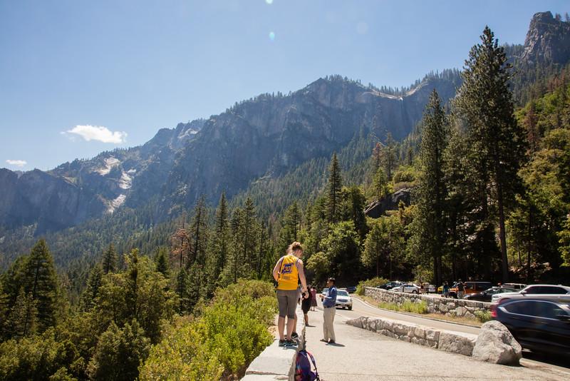 Yosemite_2016_Park-4.jpg