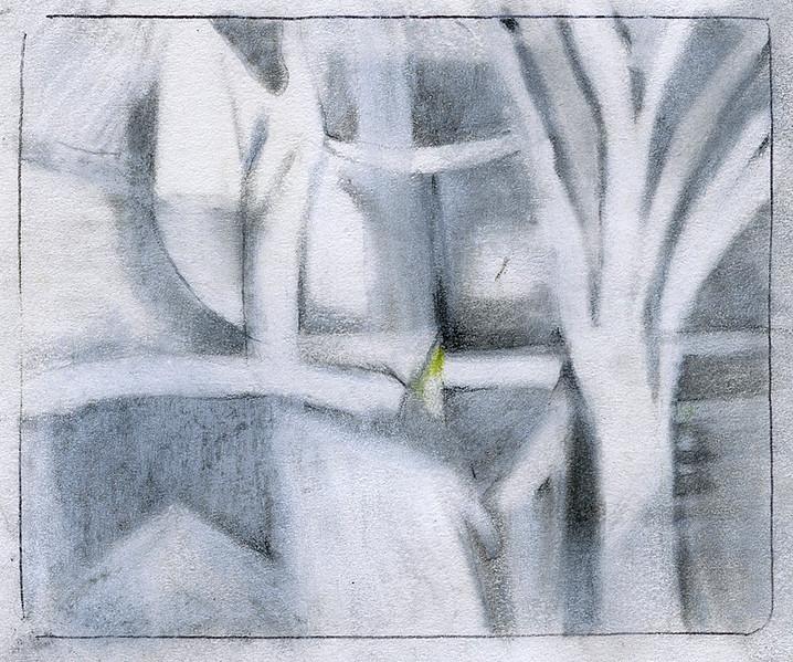 Trees (5x4)