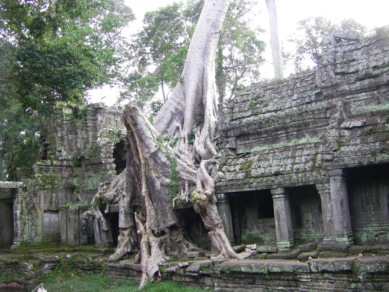 Angkor Wat and surroundings (53)