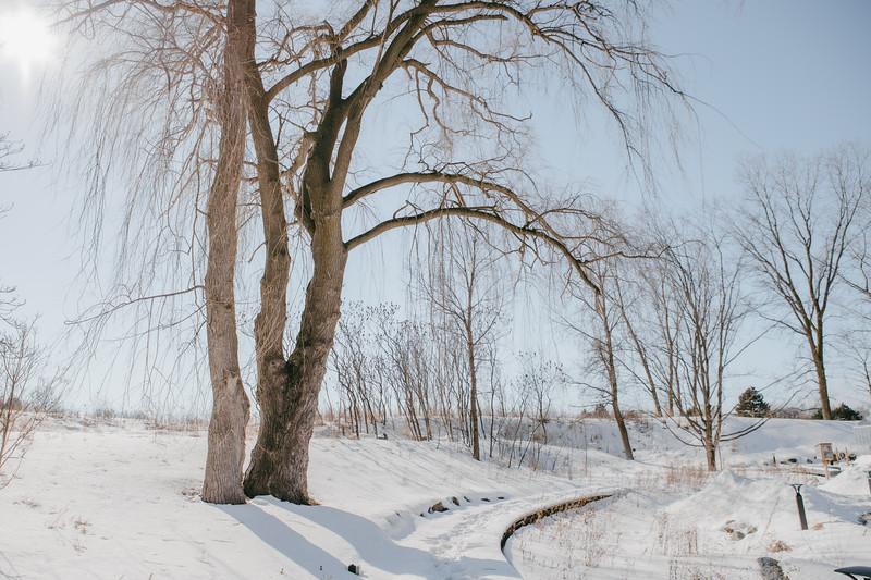 AVS_EcoPreserve_Winter2021-44.jpg