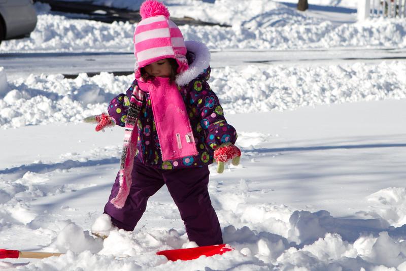 Snow2014-4.jpg