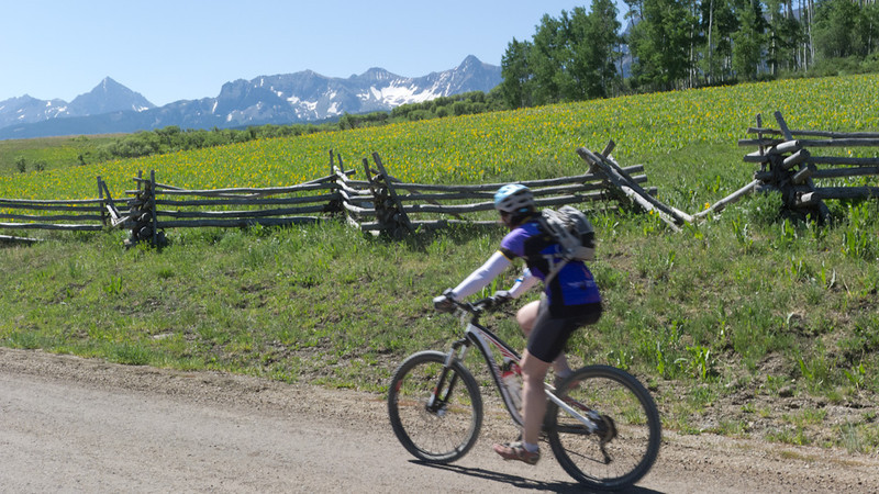 Classic Colorado Fences