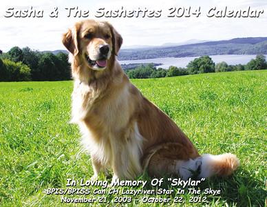Sashette Calendar 2014