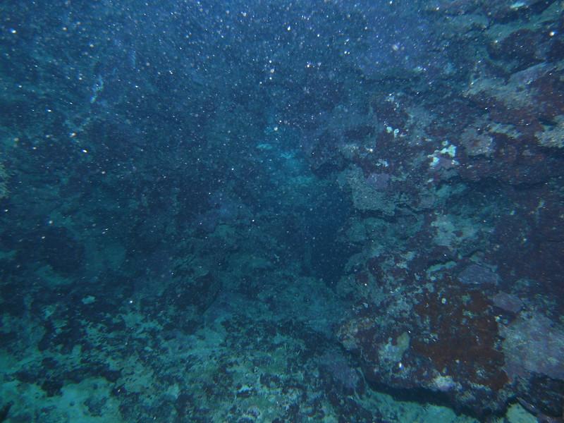 2008 Jan 03 004.JPG