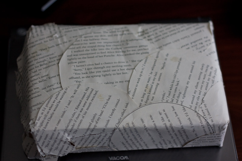 Book wrapped in book.jpg