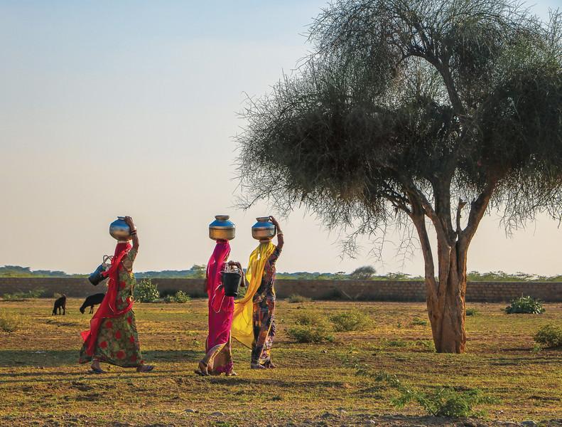Jaisalmer-India-1012.jpg
