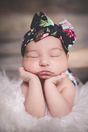 Baby Olivia's Newborn Photos