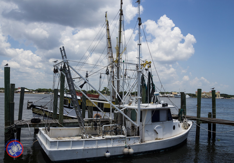 Fishing Vessels Tied Up at the Dock on the Backside of Singleton's (©simon@myeclecticimages.com)