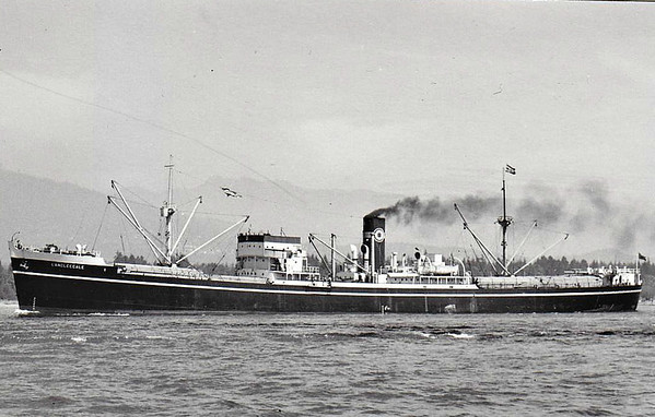 MEDOMSLEY STEAM SHIPPING CO., Barrow