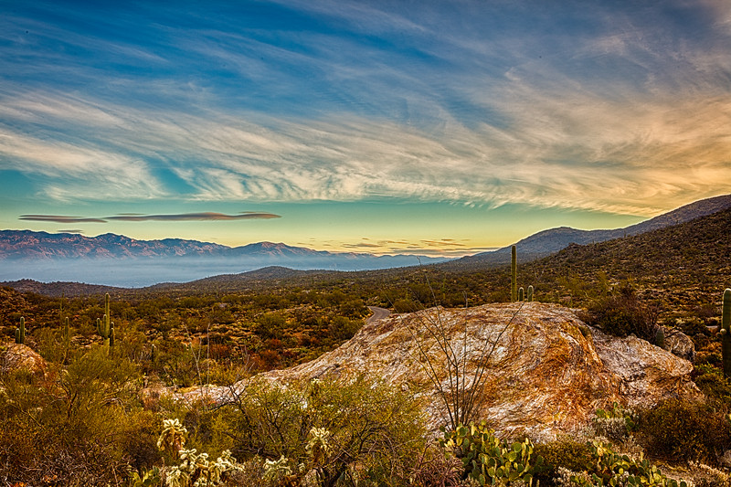 Sunrise at Saguaro National Park