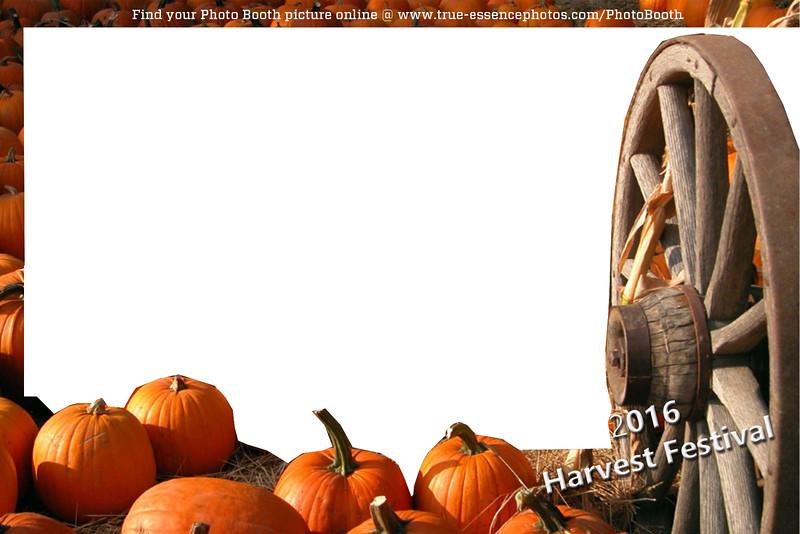 harvest festival skin.jpg