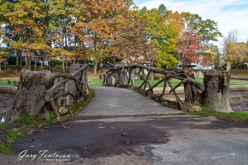 Fall Foliage-3939.jpg