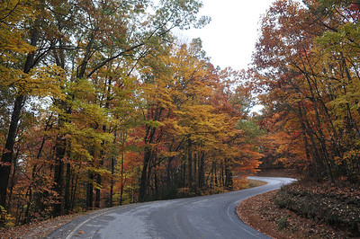North Georgia Leaves 10/29/2011