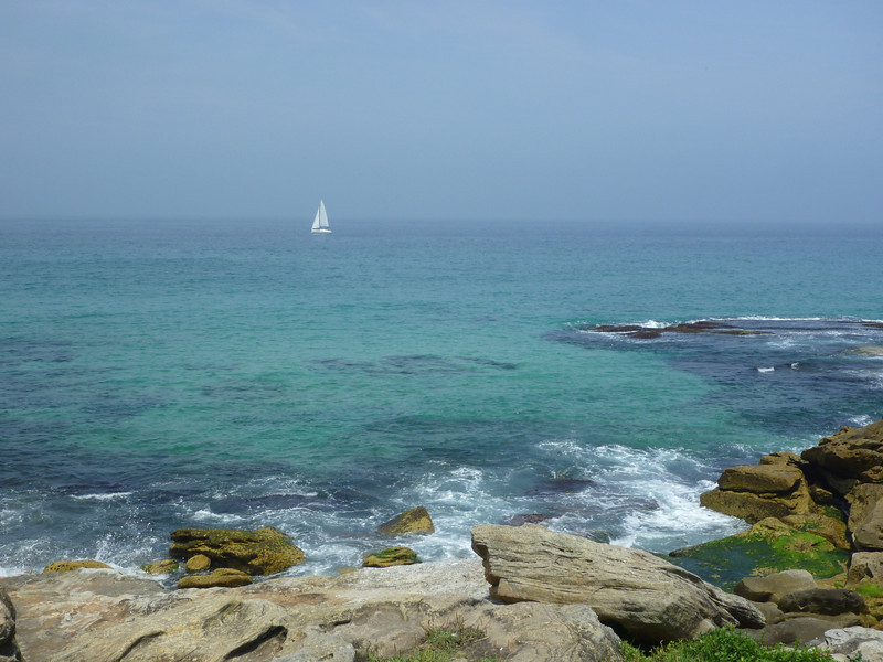 Sculpture by the Sea 109.JPG