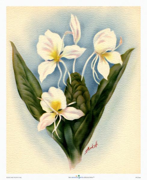 123: Ted Mundorff: Floral Art Print, ca 1940-1950.