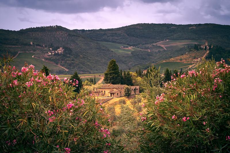 Villas & Views || Tuscany