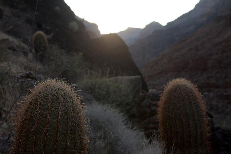 Grand Canyon October-0910.jpg