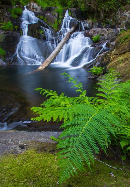 Beaver Creek Falls