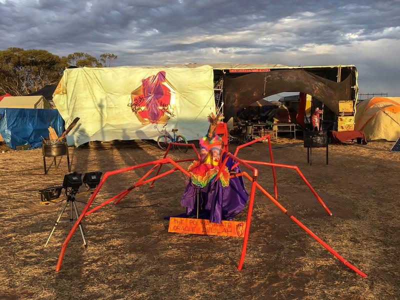 Blazing Swan 2017-Orange Spider