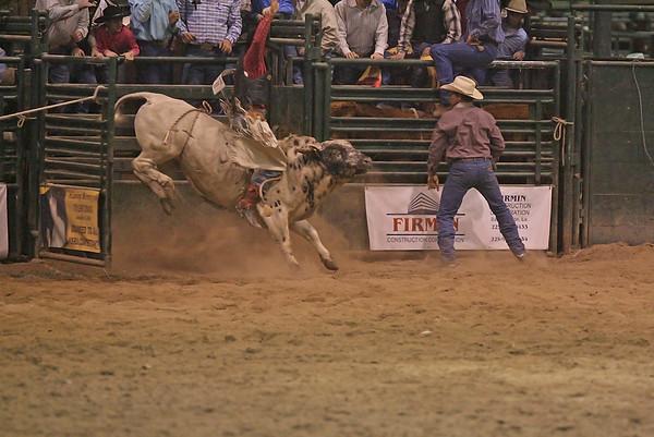 SLHSRA Bull Riding 1st Session  02/23/2007