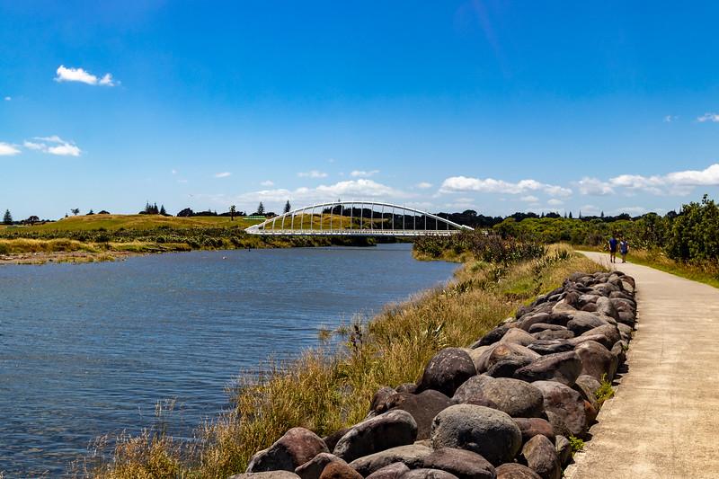 The Te Rewa Rewa Bridge