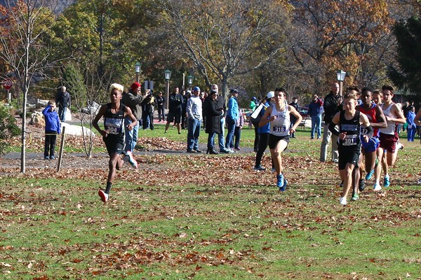 Section IX Cross-Country Championships 11-6-19