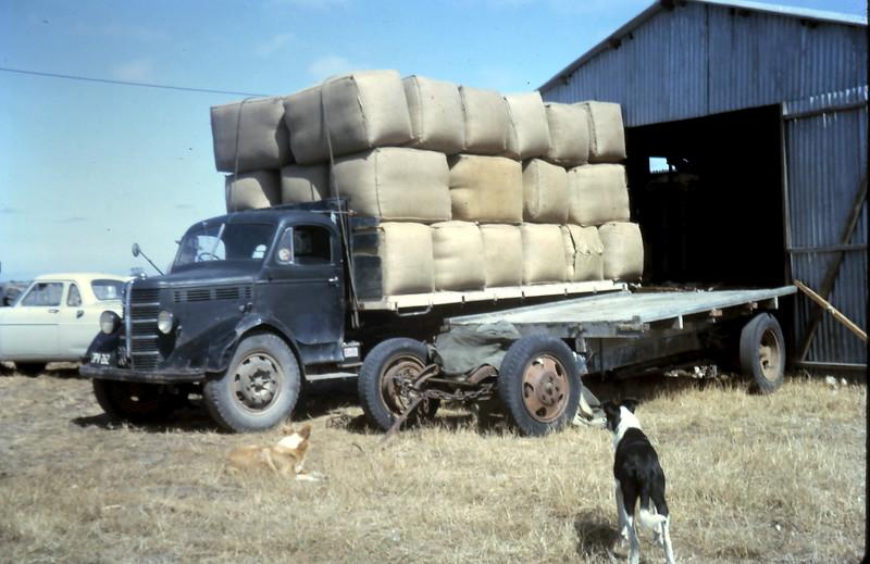 1965-1-28 (2) Wool being loaded @ Akeringa.JPG