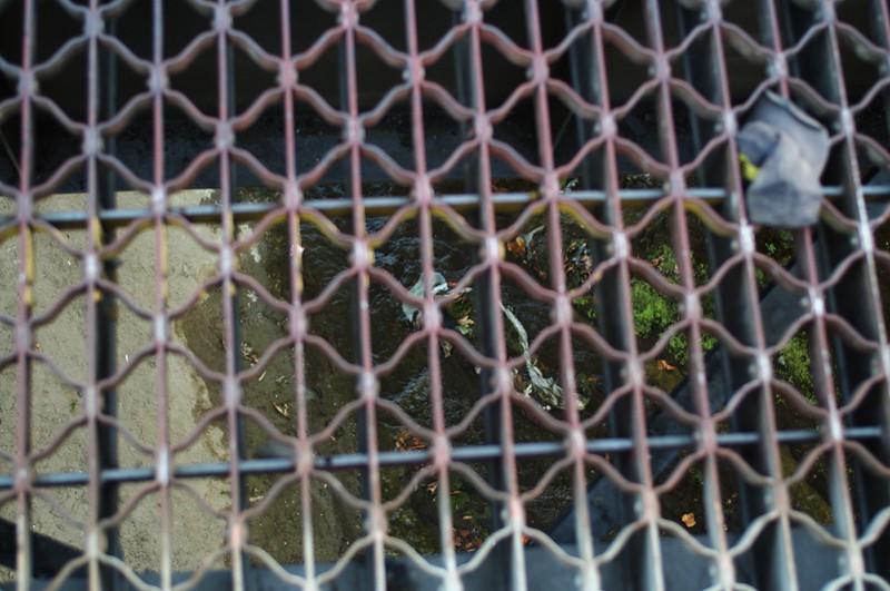 ConfluencePark027-RoadOverArroyoSecoCloseUp-2006-10-04.jpg