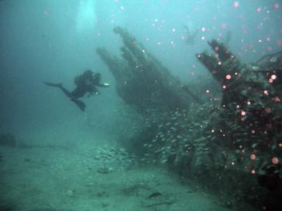 North Carolina Diving July 2007