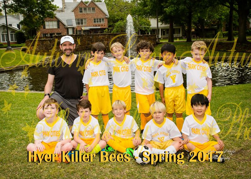 20170411 - #1 KB Killer Bees