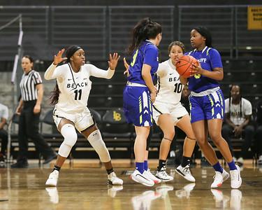 2020/2019 Women's Basketball