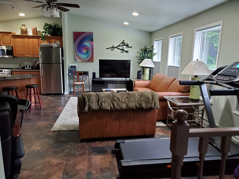 Eagles Nest Living room from the stairs.jpg