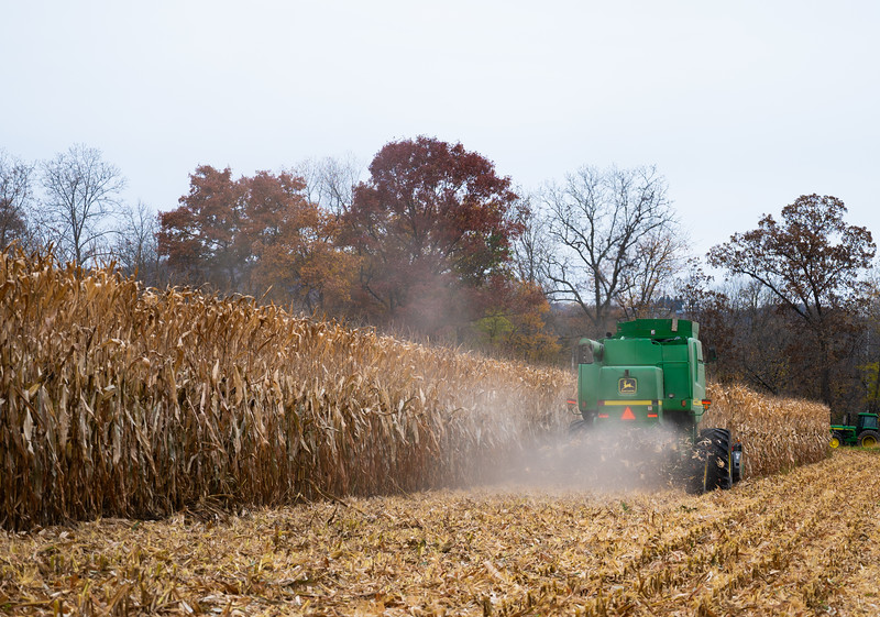10-19-2020-harvest-5.jpg