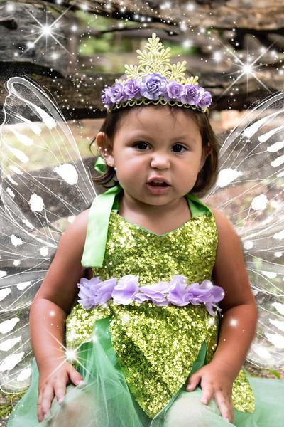 795A1985 fairy.jpg