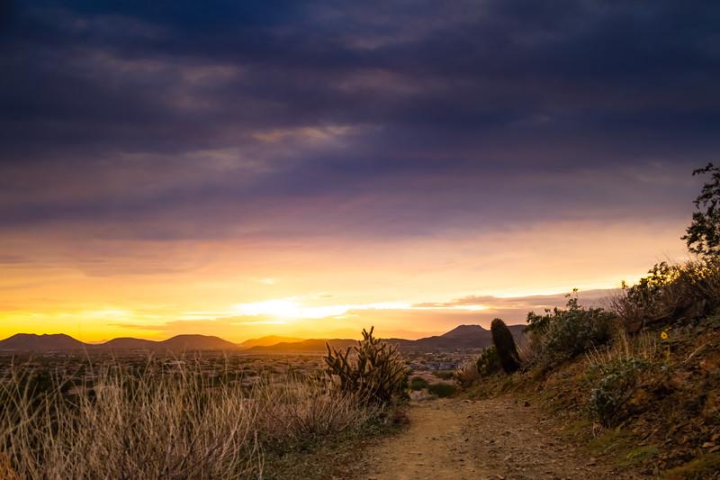 Desert Trail at Sunset