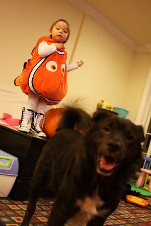 Keira - Halloween #2 - Family Pumpkins and Nemo
