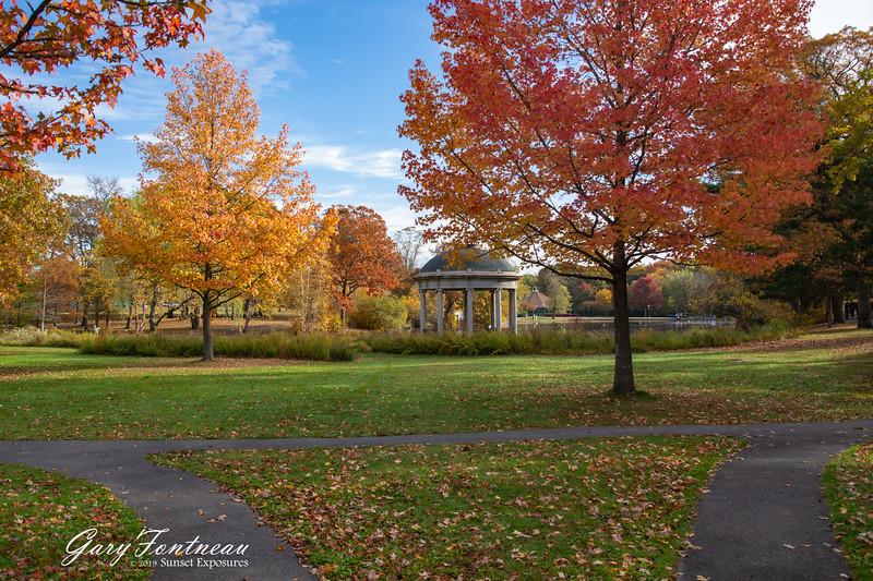 Fall Foliage-3954.jpg