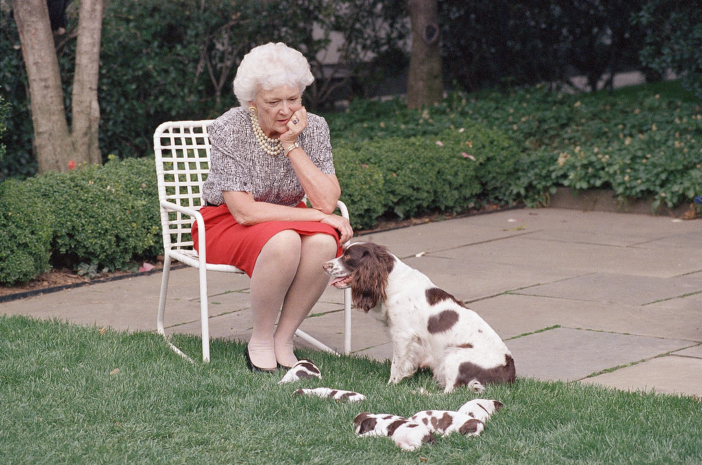 . First lady Barbara Bush watches Millie, the family dog, and her newborn puppies in the White House Rose Garden  Wednesday, March 29, 1989 in Washington. (AP Photo/Ron Edmonds)