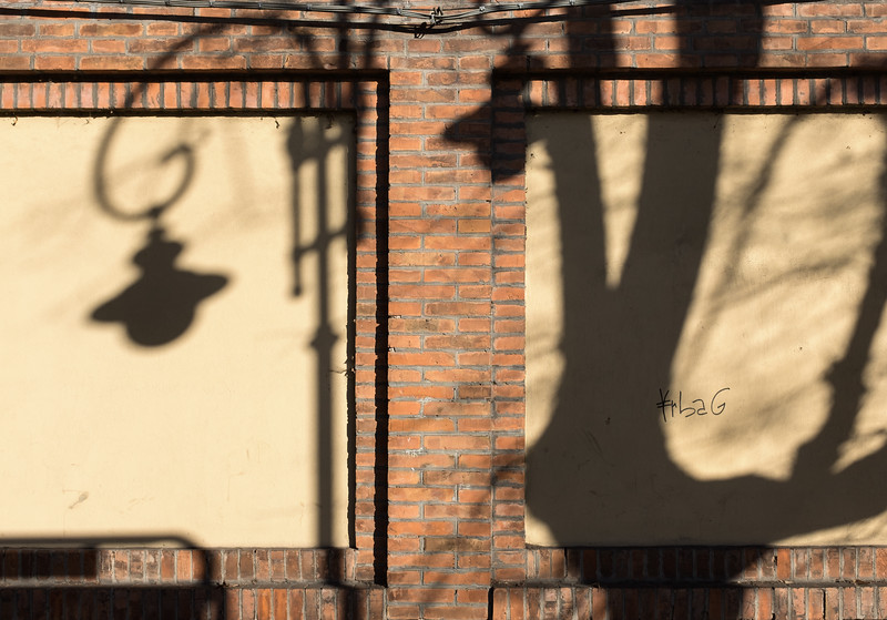 Shadow - Via Dante Alighieri, Reggio Emilia, Italy - December 26, 2016