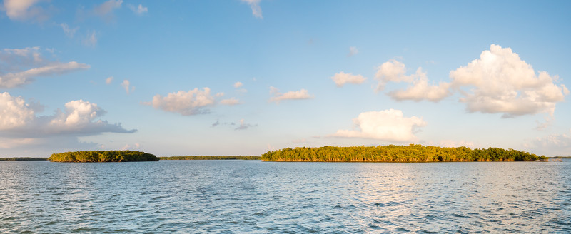 Everglades-117-Pano i3.jpg