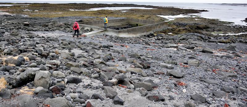 Í Arfdalsvík