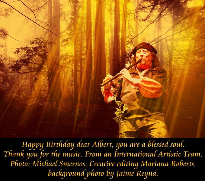 Birthday Gift for Albert #15.jpg