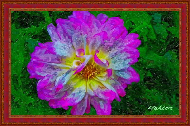 A Flower Is a Flower...