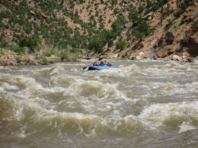 Rapids on the Yampa River