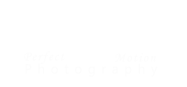 Perfect Motion Photography Pricing