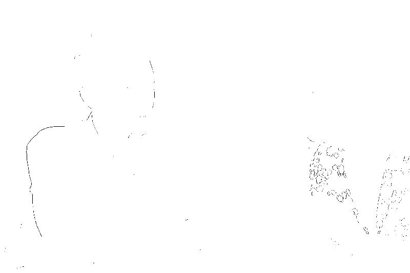 DSC09161.png