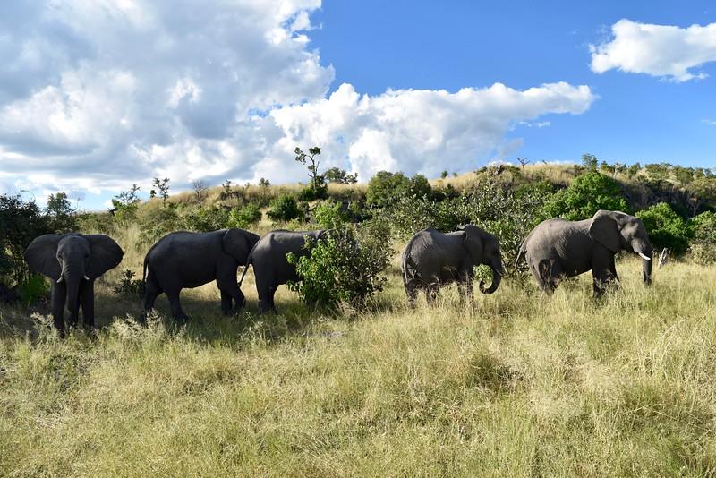 Africa2016 - 30.jpg