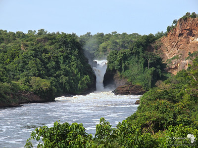 Murchison Falls From the Trail