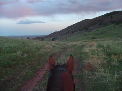 20050509 Ride to Back Pastures, Elk