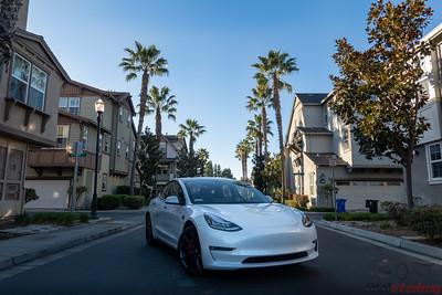 Tesla Model 3 - Full STEK DYNOShield PPF and CQFR Coating 2